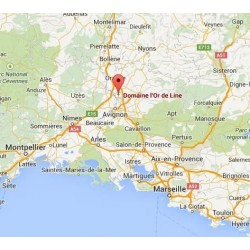 chateauneuf-pape-or-line-rouge-carte